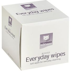 WIPES EVERYDAY 33x29cm LOW LINT (12x100) product photo